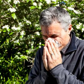 A Primavera e as várias formas de alergia
